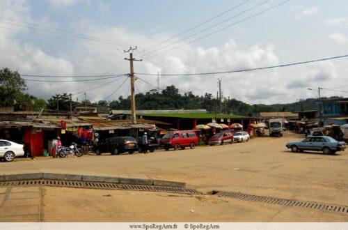 Article : La belle et rebelle Ndjolé