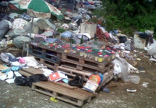 1-Libreville-20141129-00733